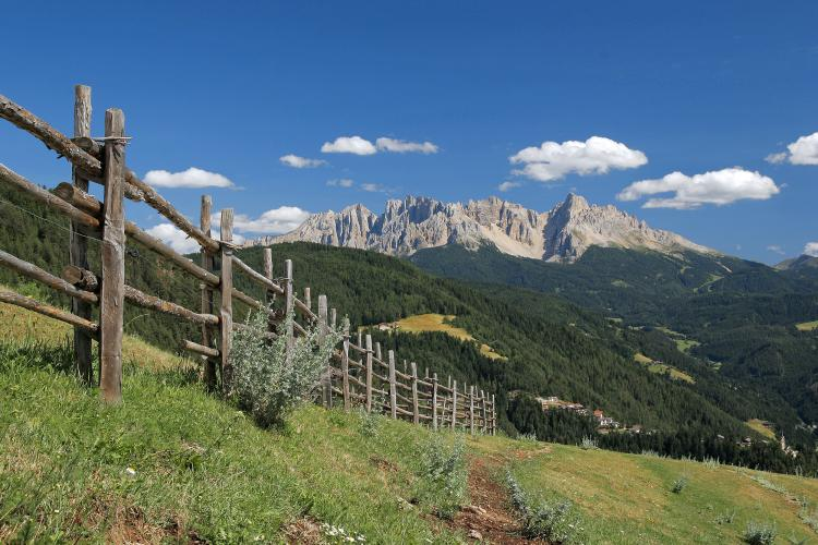 The mountain range of Latemar in the South Tirolean Dolomites